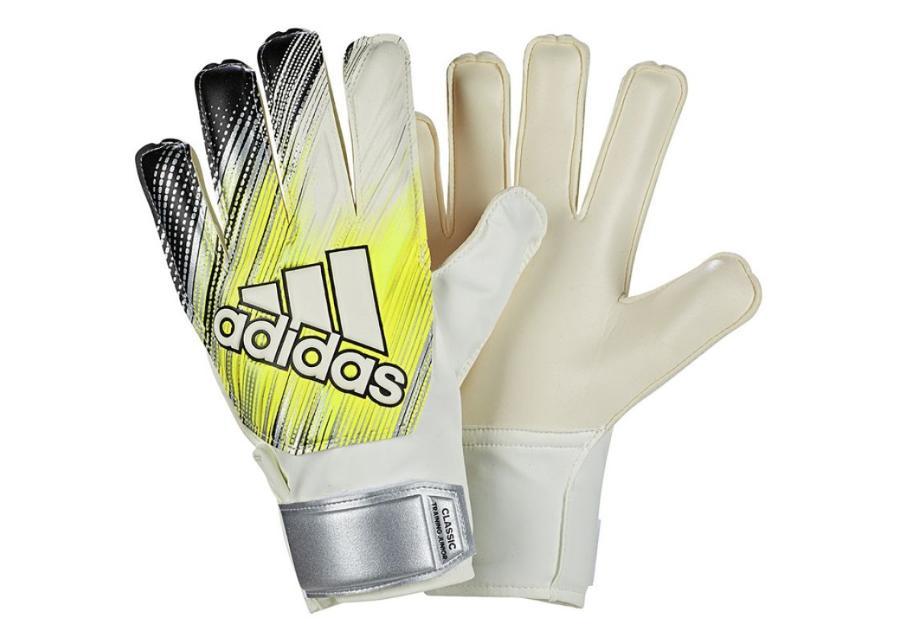 Lasten maalivahdin hanskat Adidas Classic TRN JR DY2622 valkoiset