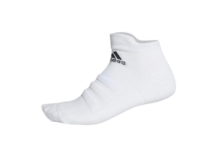 Miesten urheilusukat Adidas Alphaskin LC Ankle M CV7695
