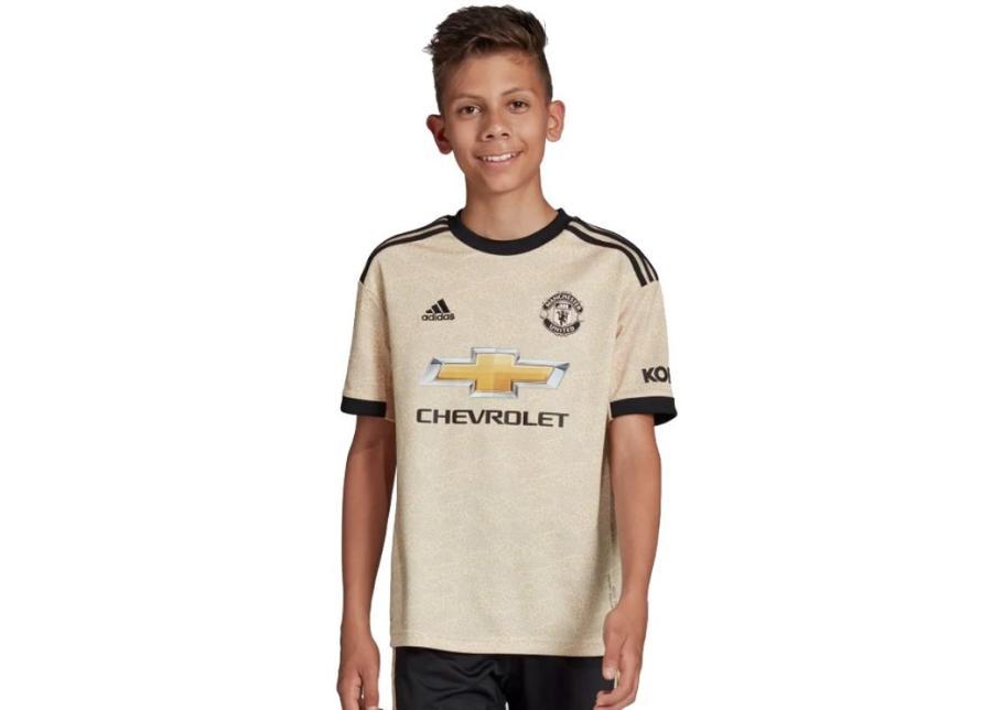 Lasten jalkapallopaita adidas Manchester FC Away JSY Y Junior DX8945