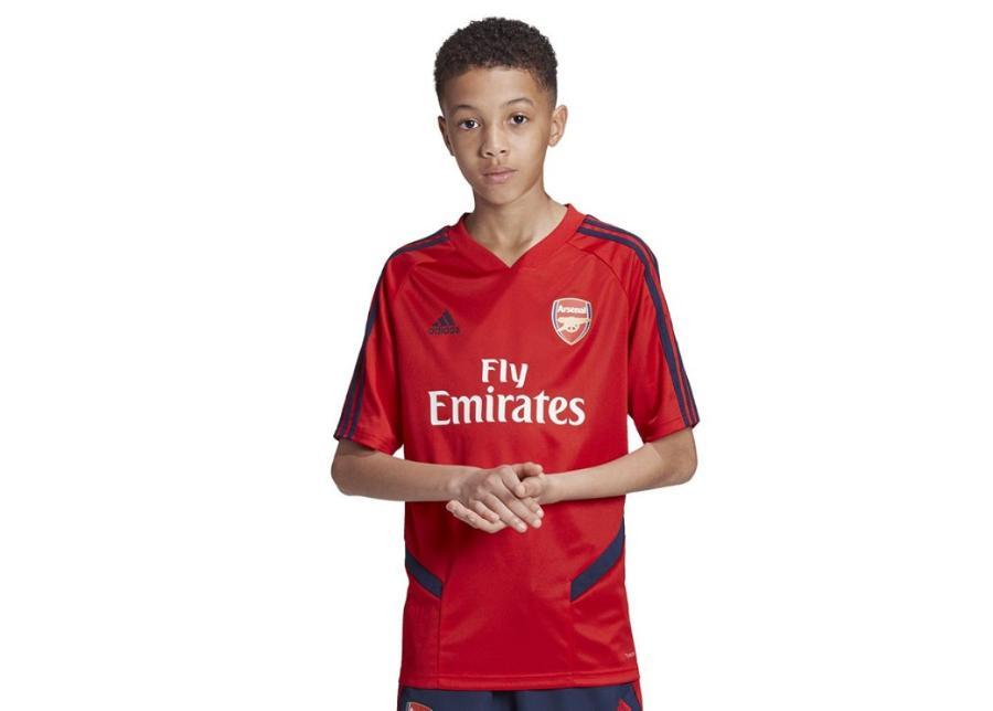 Lasten jalkapallopaita Adidas Arsenal TR JSY Y Junior EH5699