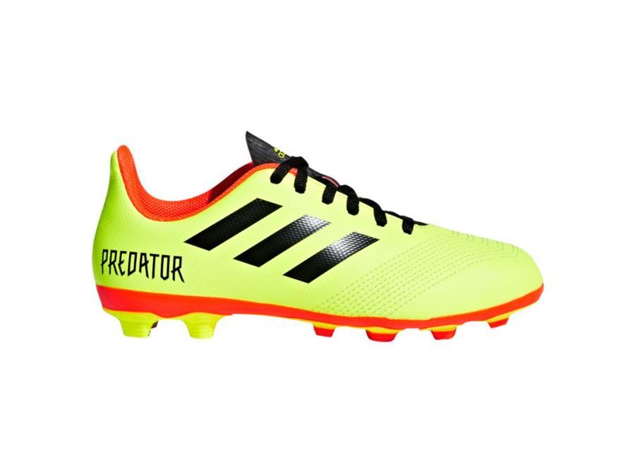 Lasten jalkapallokengät Jr adidas Predator 18.4 FxG JR DB2321