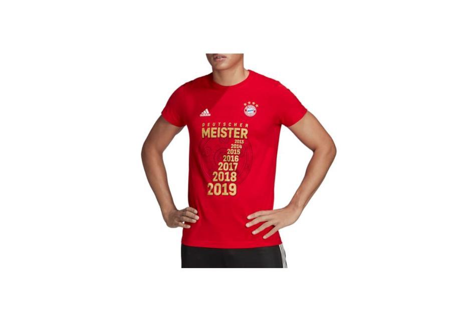 Miesten jalkapallopaita adidas FC Bayern Meister Tee M GC9993