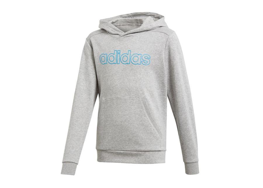 Lasten huppari Adidas Essentials Commercial Linear Hoodie JR DY2973
