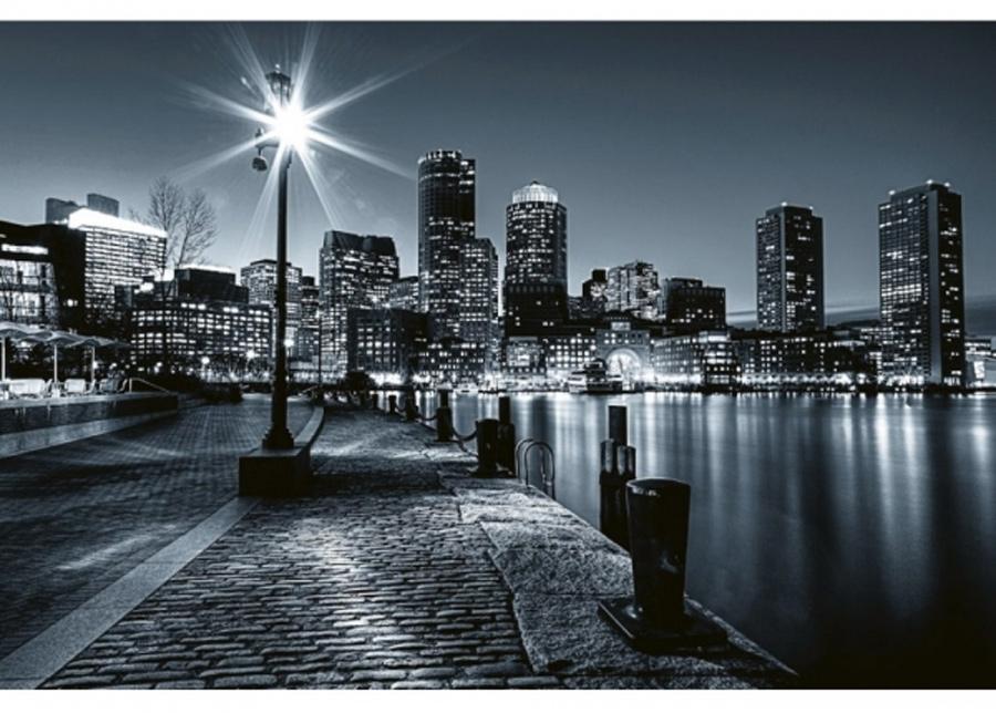 Fleece-kuvatapetti Boston 375x250 cm