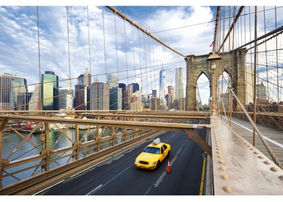 Fleece-kuvatapetti New york city 225x250 cm