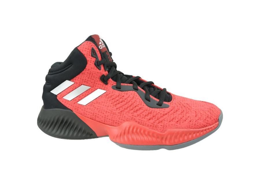 Miesten koripallokengät adidas Mad Bounce 2018 M AH2693