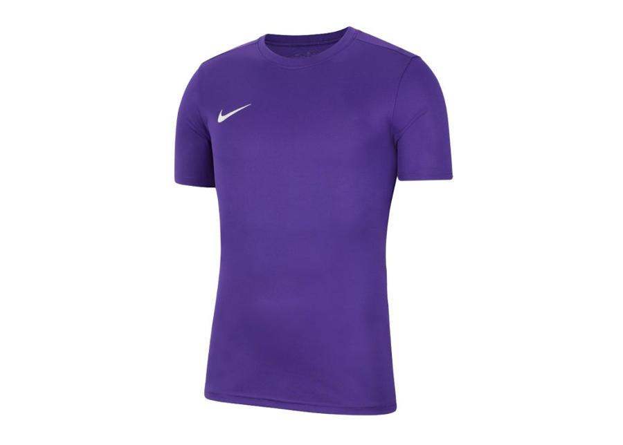 Miesten jalkapallopaita Nike Park VII M BV6708-547