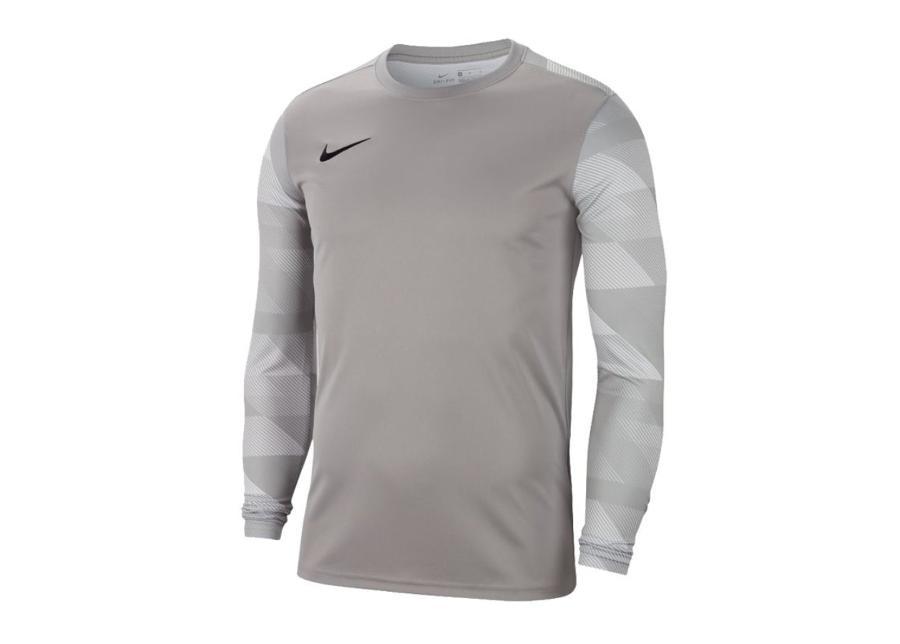 Miesten treenipaita Nike Dry Park IV M CJ6066-052