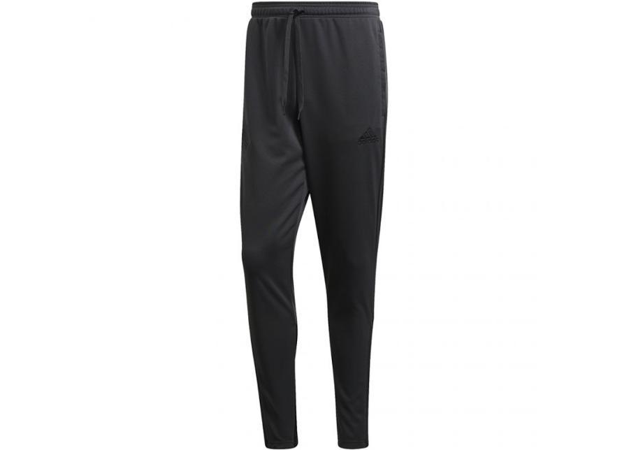 Miesten verryttelyhousut adidas Tan Training Pants M FJ6329