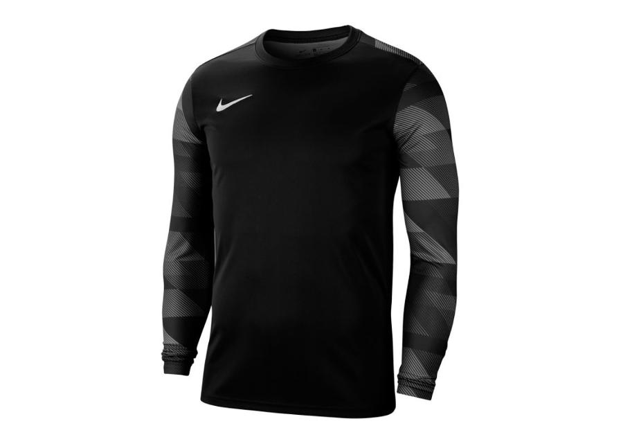 Miesten treenipaita Nike Dry Park IV M CJ6066-010