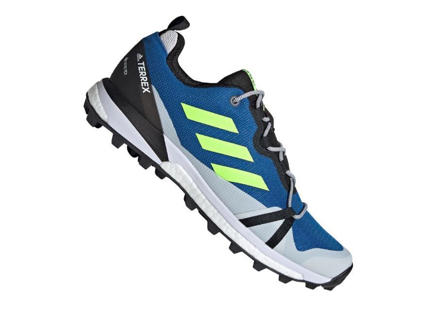 Miesten retkeilykengät Adidas Terrex Skychaser LT Gtx M EH2427