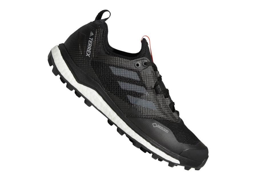 Miesten retkeilykengät Adidas Terrex Agravic Xt Gtx M AC7655