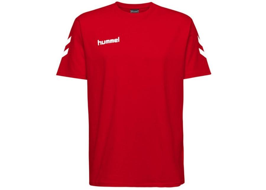 Miesten treenipaita Hummel M 203566 3062