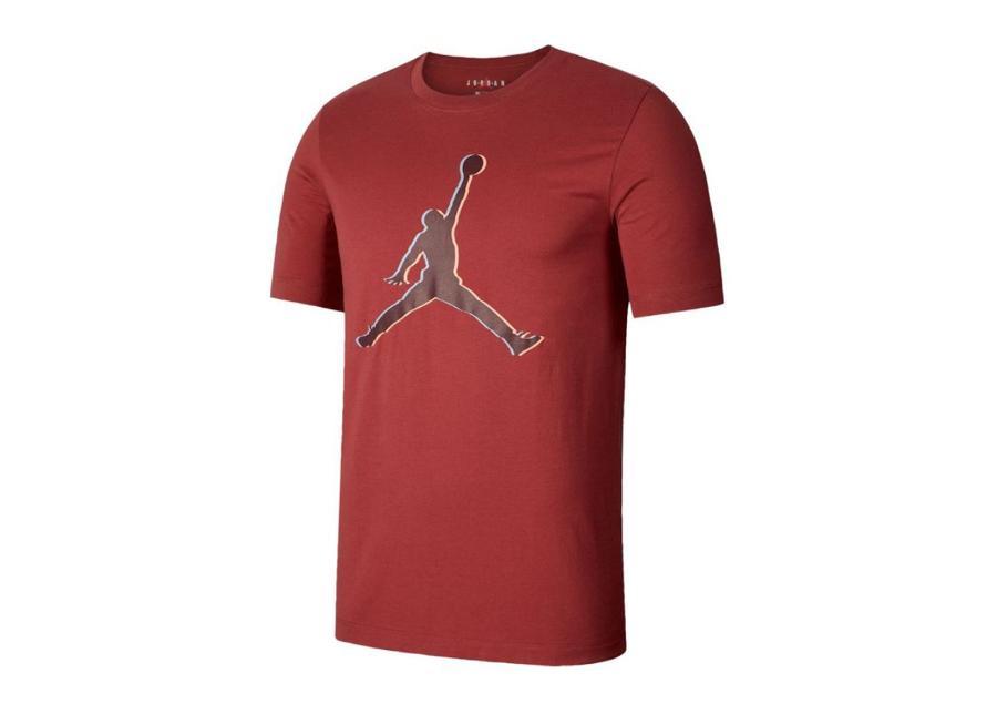 Miesten koripallopaita Nike Jordan Jumpman 23D M CD5655-661