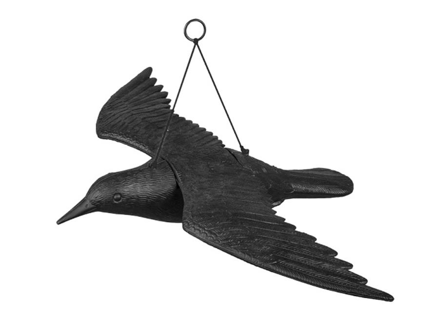 Linnunpelätin Lentävä korppi