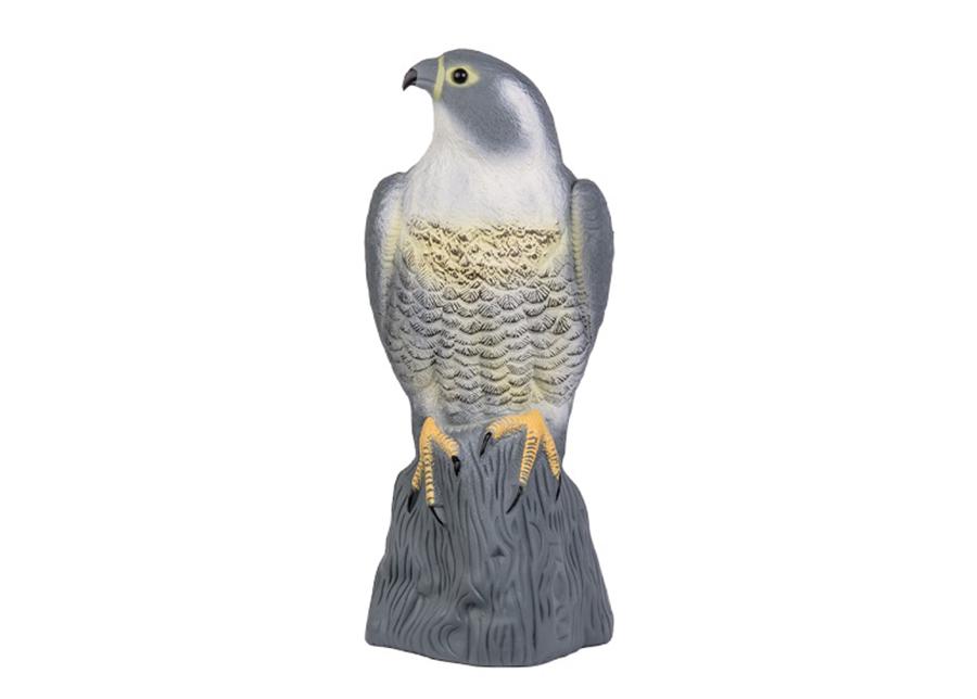 Linnunpelätin Seisova haukka