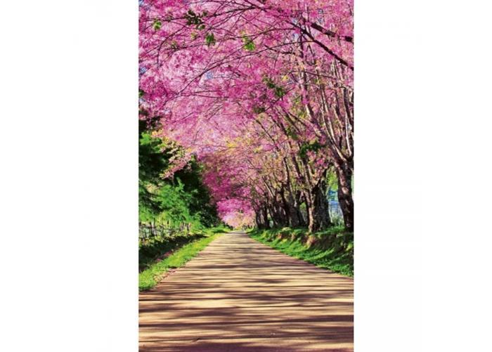 Fleece-kuvatapetti Blossom alley 150x250 cm