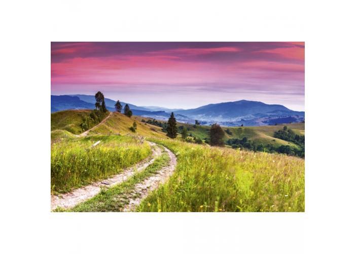 Fleece-kuvatapetti Blooming hills 375x250 cm