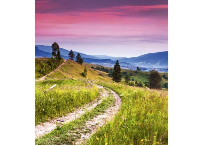 Fleece-kuvatapetti Blooming hills 225x250 cm