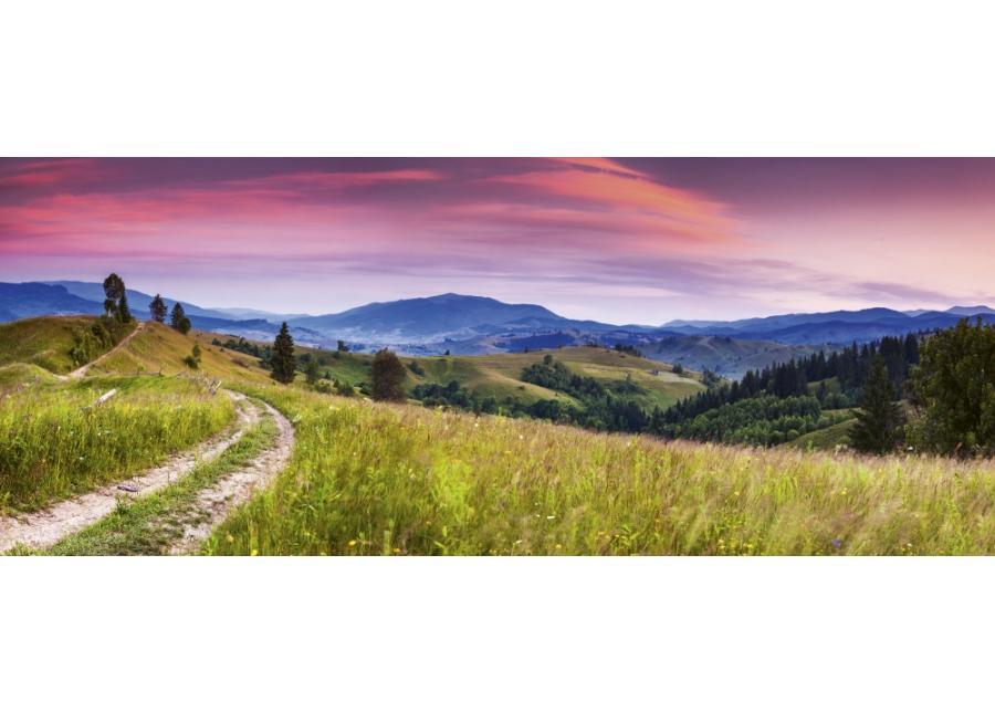 Fleece-kuvatapetti Blooming hills 375x150 cm