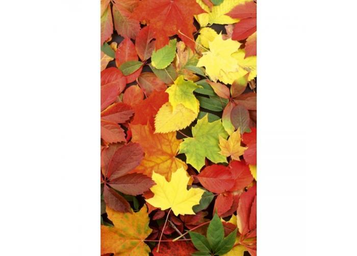 Fleece-kuvatapetti Colourful leaves 150x250 cm