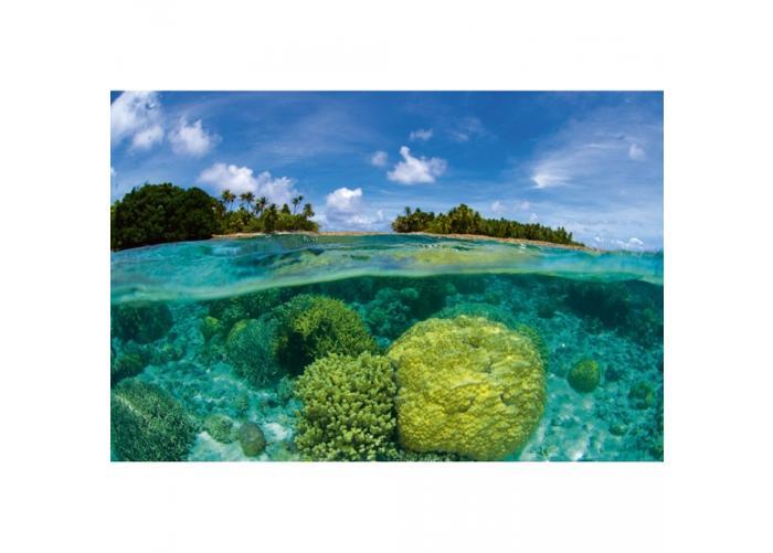 Fleece-kuvatapetti Coral reef 375x250 cm