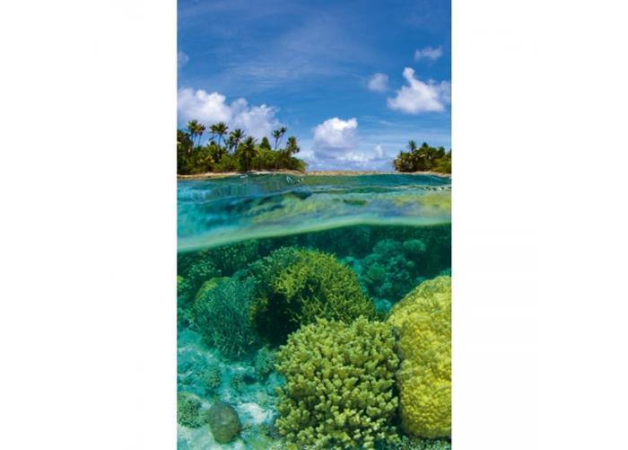 Fleece-kuvatapetti Coral reef 150x250 cm