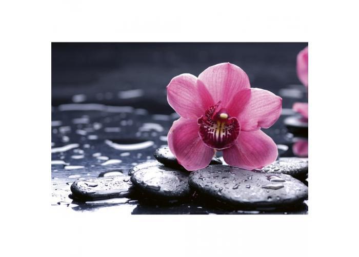 Fleece kuvatapetti Orchid 375x250 cm