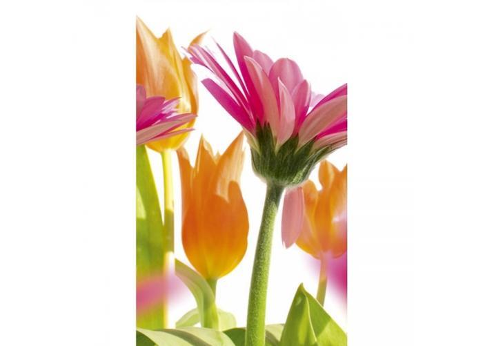 Fleece kuvatapetti Spring flowers 150x250 cm