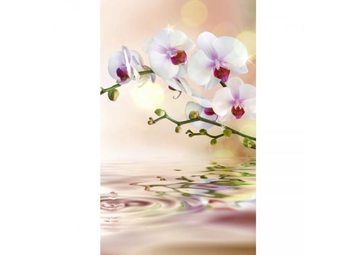 Fleece kuvatapetti White orchid 150x250 cm