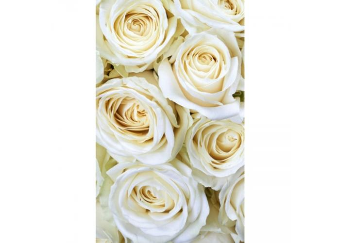 Fleece kuvatapetti White roses 150x250 cm
