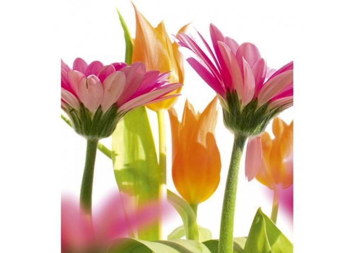 Fleece kuvatapetti Spring flowers 225x250 cm