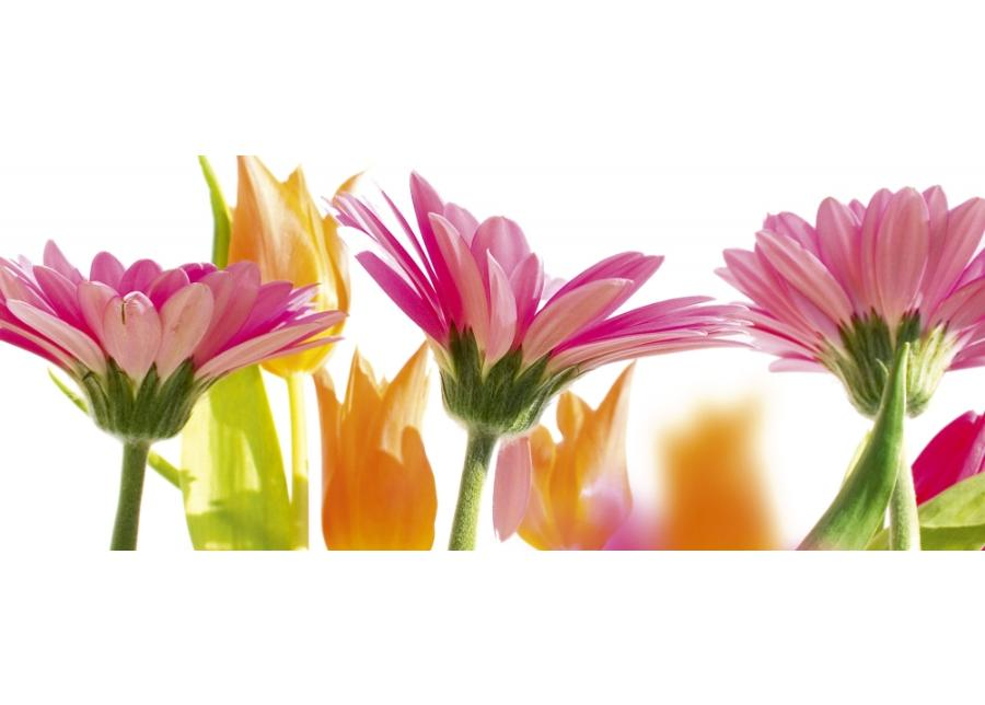 Fleece kuvatapetti Spring flowers 375x150 cm