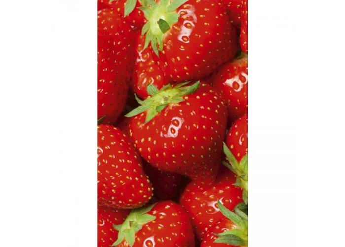 Fleece kuvatapetti Strawberry 150x250 cm