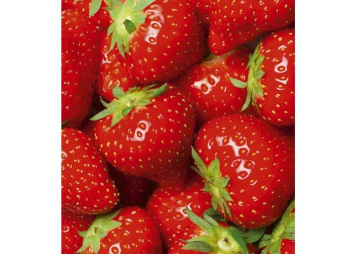 Fleece kuvatapetti Strawberry 225x250 cm