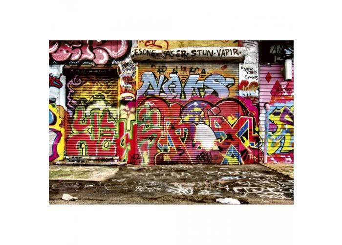 Fleece kuvatapetti Graffiti street 375x250 cm