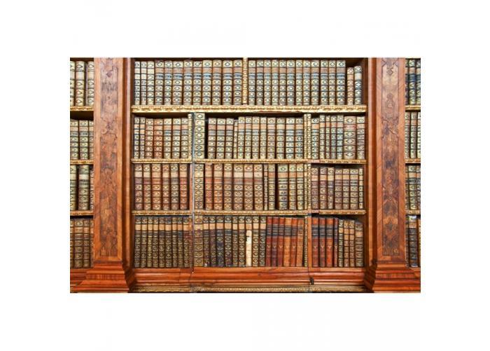 Fleece kuvatapetti Library 375x250 cm