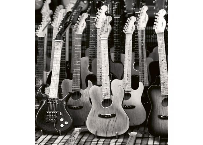 Fleece kuvatapetti Guitars collection 225x250 cm