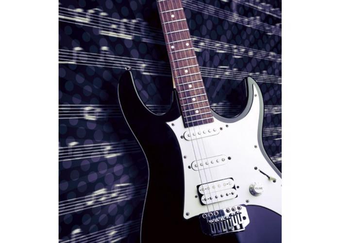 Fleece kuvatapetti Electric guitar 225x250 cm