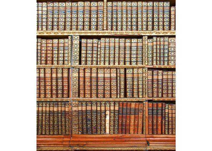 Fleece kuvatapetti Library 225x250 cm
