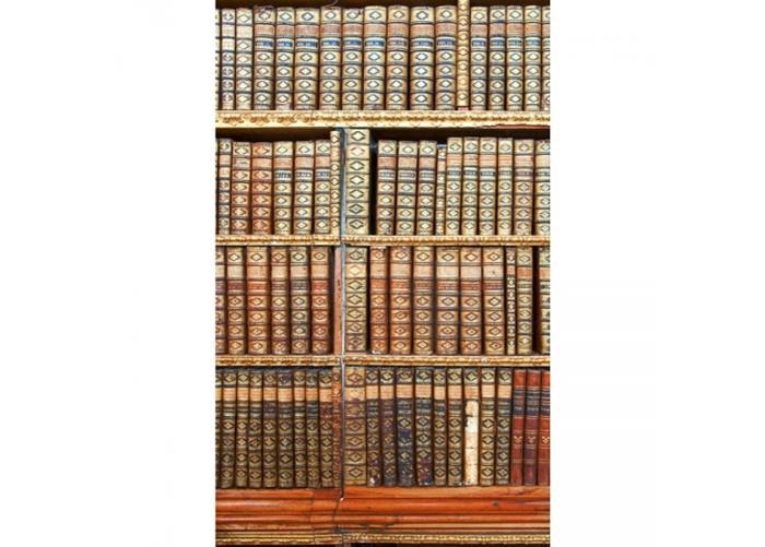 Fleece kuvatapetti Library 150x250 cm