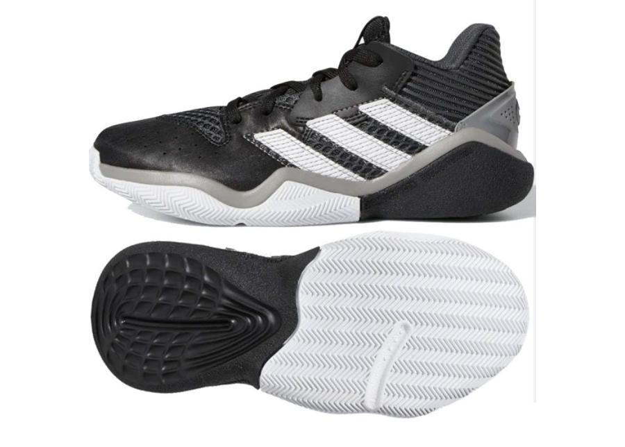 Lasten koripallokengät adidas Harden Stepback Jr EF9905