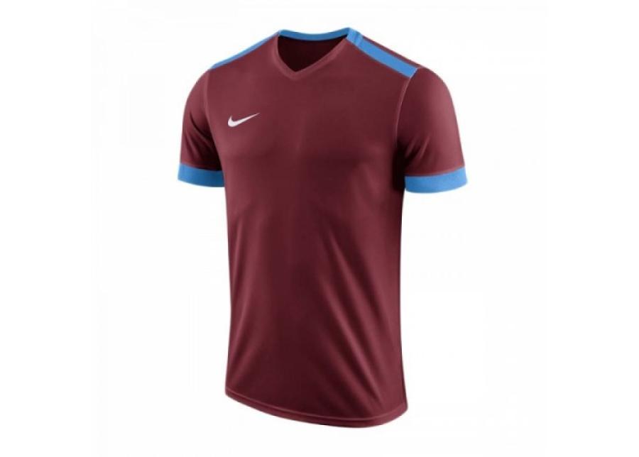 Miesten jalkapallopaita Nike Park Derby II M 894312-677