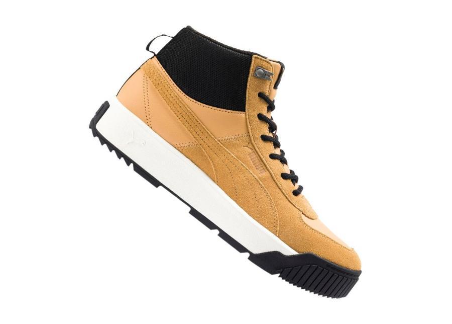 Miesten vapaa-ajan kengät Puma Tarrenz SB Castlerock M 370551-02