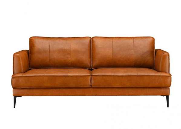 Sohva Leo