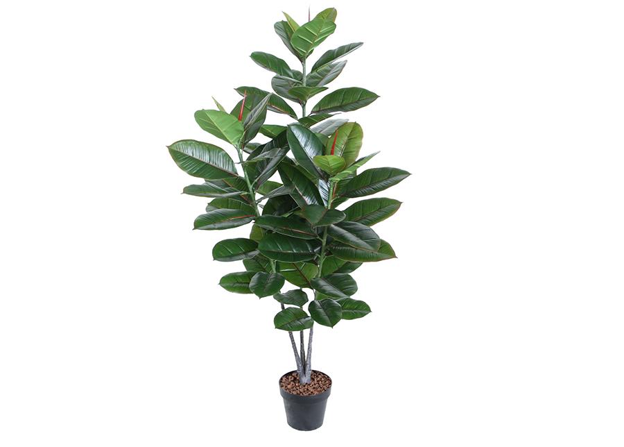 Tekopuu Kumipuu 130 cm