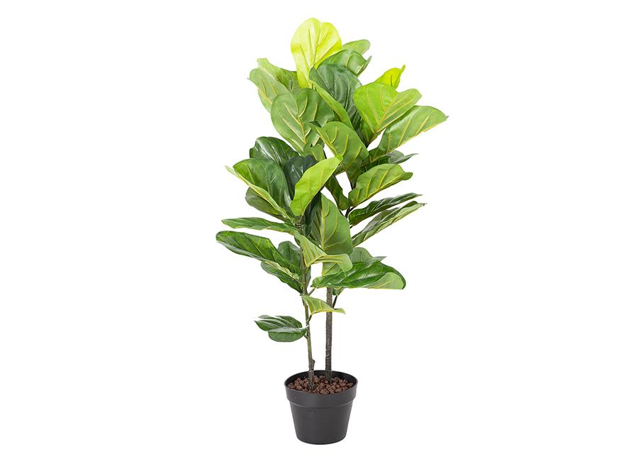 TekopuuFiddle leaf 190 cm
