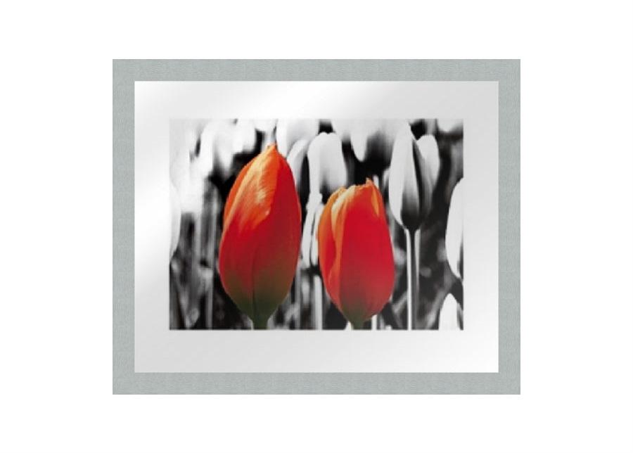 Taulu MODERN - TWO RED TULIPS1 20x25 cm